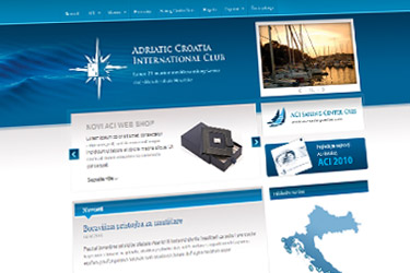 ACI 2011 website